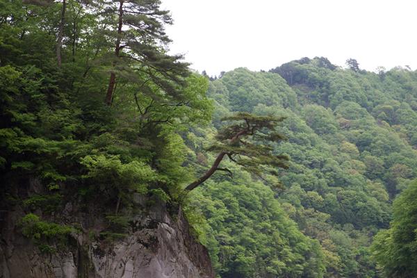 天竜峡温泉