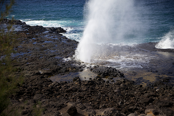2013年ハワイ日記